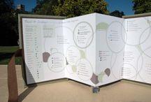 Wedding Genealogy Chart