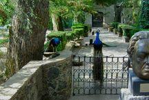 La Noria / Imágenes de un paraíso en la Ciudad de México: el Museo Dolores Olmedo, en La Noria, Xochimilco.  / by Museo Dolores Olmedo