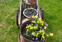 #23 Hage Garden / Bilder fra hagen