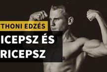 Fitnesz / motiváció megminden