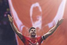 Liverpool fc ywnwa