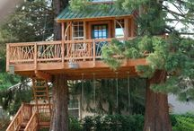 Lofts, Cabins, and Tree Houses / by Judy DeFoor