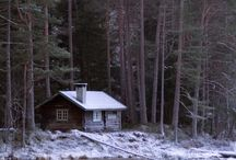 Cabin in the woods   By the lake