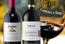 Chilean Wines / Chile produces much less wine than Argentina, but has had greater success on the export markets. Known of its fruits and appealing wines, made from a wide range of grape varieties, Chile has the knack of producing wine style that consumers are very happy to drink.