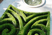 Garden Hedge Art