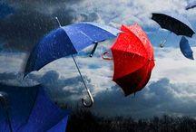 Giornate di Pioggia / Piove sui monti e sulle scale  su petali e parole  sul cuore mio che batte, Piove sui campi abbandonati e sulla mia città.   A.B.