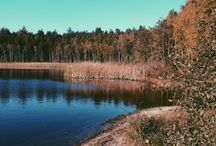 Autumn / by Martyna Krukowska
