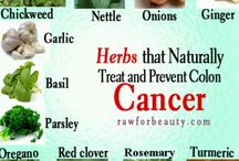 Herbs and other natural therapies