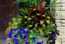 truhliky,vázy na zahradu