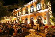 Dining Experiences / Cancun, Cozumel and Mazatlan food favorites!