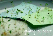 Papel plantable