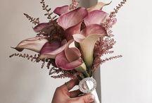 цветы тонирование