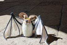 Крылан полуночник.( Летучая мышь).