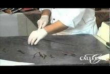 csoki videó