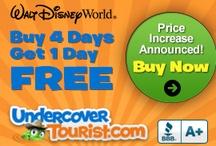 Disney trip II / by Dawn Friemel