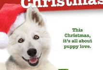 Christmas Movies / A general list of Christmas movies, new, old big screen, made for TV