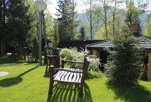 Zile frumoase la Alpin