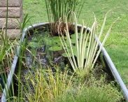 Sedges and Macrophytes in Landscapes / Water can add so much to a landscape. From grand ponds to courtyard water pots the element of water stimulates the senses like no other garden feature can. Examples of how water can be used in landscapes can be truly inspiring........go on bring some water into your garden!