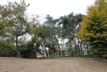 Loonse and Drunense Duinen - Locations