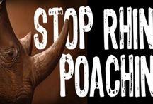 Stop Rhino Poaching