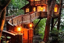ağaç evim