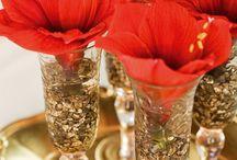 Amaryllis - Weihnachtlicher Klassiker in aufregender Inszenierung / Einen Sternenhimmel aus Amaryllis-Blüten haben Produkt-Designer des FDF für eine Werbekampagne des Blumenbüro inszeniert. Die aufregenden Dekorationen fanden in drei Blumengeschäften in NRW statt. Kunden und Gäste waren begeistert.