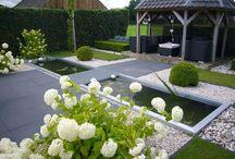Next Dream Garden
