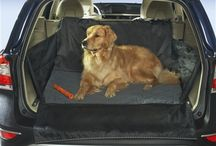 Wag 'n Ride Car Accessories for 4-Pawed Passengers / Whether going for a romp in the park, splash on the beach or hike up a hillside, High Road has your car covered. No more muddy paw prints or drooley doggie stains on carpet and upholstery.