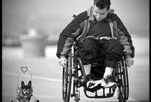 Beperking / Disabilities