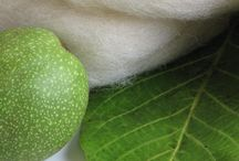 seventh seven…the walnut leaf / Photography - Story : how the green walnut leaf gave away her color - natural dye process