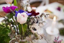 FRÜHLING: Rezepte, Deko & DIY / Endlich ist die graue und kalte Jahreszeit vorbei! Die Natur erwacht wieder zum Leben, die ersten Frühlingsblümchen sprießen im Garten und wir bekommen wieder richtig Lust hinauszugehen. Wir zeigen euch hier die schönsten Deko- und DIY-Ideen für den Frühling, sowie die passenden Rezepte für einen bunten Deko-Tisch.