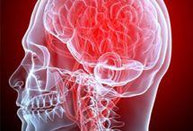Austin Neurology & Neurosciences