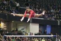 Sports / by Rebecca Tullar