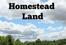 Homesteading Helps