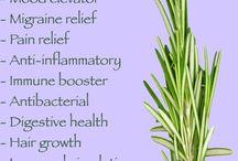 efectele plantelor