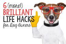 Pet- Life Hacks
