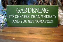 Gardening Quotes / by Heirloom Organics