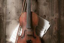 violinists dream