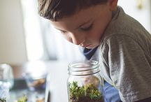 Elementary Science / Elementary science studies and ideas for homeschool.