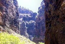Tenerife: Your Perspective in Photos / We would like you to upload photos from your holiday in Tenerife.