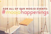 Moojo Happenings