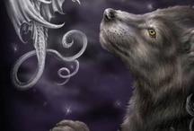 sárkány, farkas