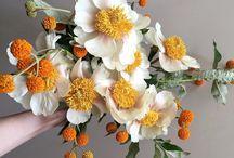 Citrus Toned Wedding Inspiration / Wedding colour palette inspiration | Fresh citrus colour scheme