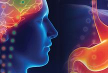 Brain Boosting / Cognitive Performance   Nutrition   Science   Noggin Nosh   ADHD