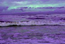 Mint&Purple