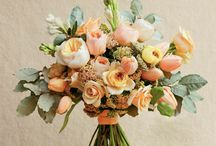 Wedding by colour - peach & apricot