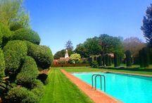Favourite swimming pools