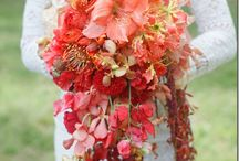 Coral || Wedding inspiration / Coral || Wedding inspiration