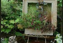 Картинки из растений
