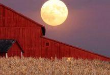 Moon / by Deb Bahr